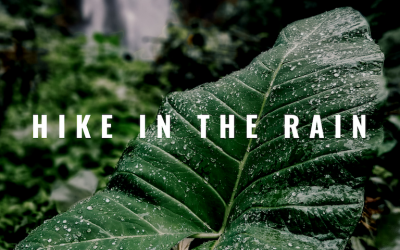 5+ Benefits to Hiking in the Rain