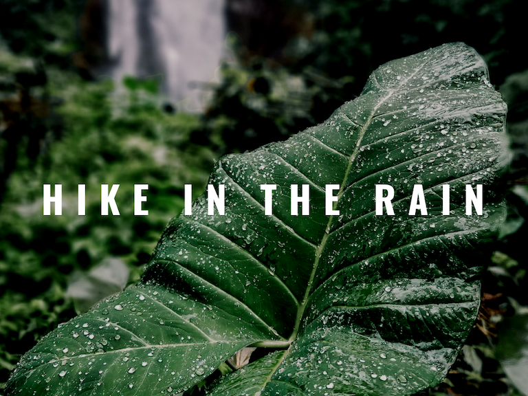 hike-in-the-rain-voyage-stories